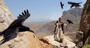 elijah-fed-by-ravens